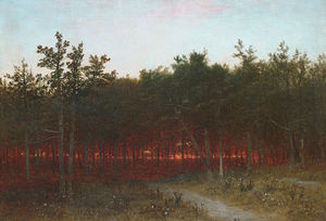 twilight in the cedars at darien connecticut
