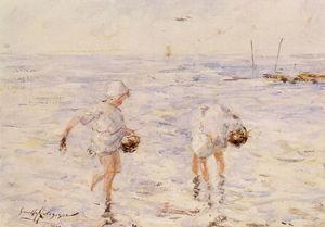 gathering shells at the beach