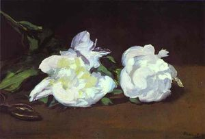 Branch of White Peonies and Shears