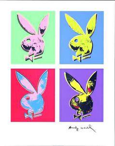 Bunny multiple - (2602619)