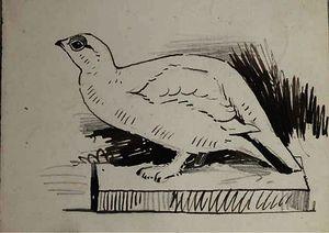 Eight sketches of birds