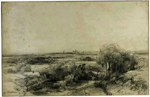 Panoramic view of haarlem with the ruins of castle brederode