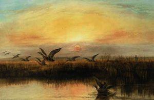 Duck flighting at dusk