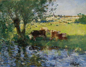 Cows in the Willow`s Shade