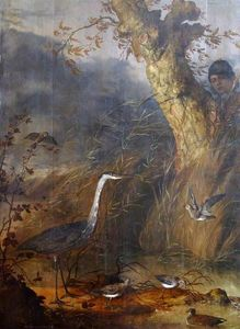 Man Watching Waterfowl from behind a Tree