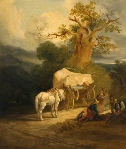 The market cart
