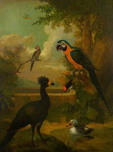 Macaw and Other Birds in a Landscape