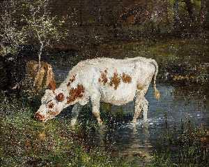 pasto Vaca  a  el  Ribera