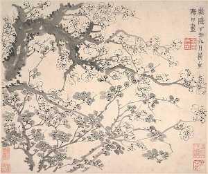 清 金農 梅花圖 冊 Plum Blossoms