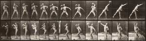 Animal Locomotion (plate 319) (Man Throwing a Ball)