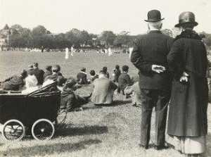 Cricket in the Park