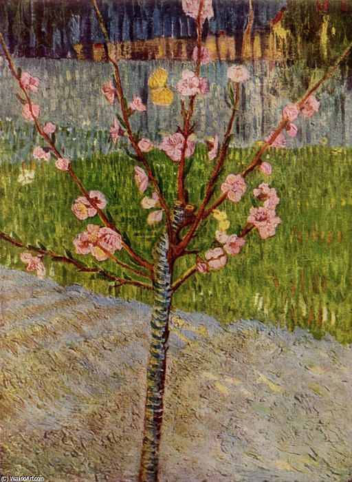 Almond Tree in Blossom, 1888 by Vincent Van Gogh (1853-1890, Netherlands) | Art Reproductions Vincent Van Gogh | WahooArt.com