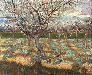 Vincent Van Gogh - Apricot Trees in Blossom 2 - (Buy fine Art Reproductions)