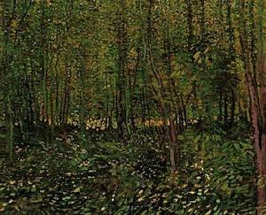 Vincent Van Gogh - Trees and Undergrowth 2 - (paintings reproductions)