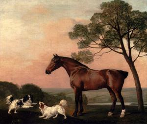 George Stubbs - A Bay Hunter With Two Spaniels - (Buy fine Art Reproductions)