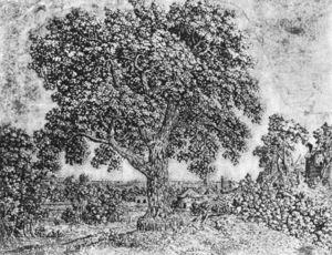 Hercules Seghers - グレートツリー
