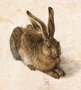 Albrecht Durer - Young Hare - (oil painting reproductions)
