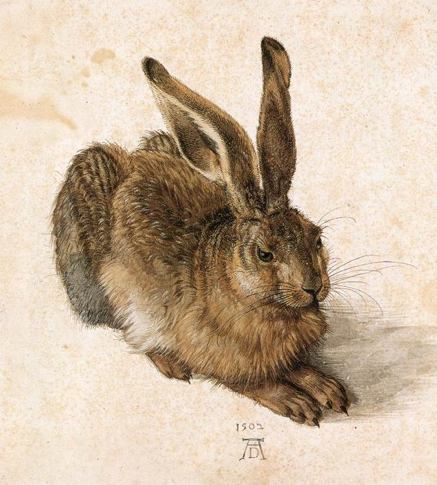 Young Hare, 1502 by Albrecht Durer (1471-1528, Italy) | Famous Paintings Reproductions | WahooArt.com