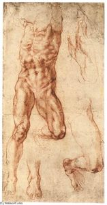 Michelangelo Buonarroti - Four Studies for the Crucified Haman (recto)