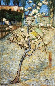 Vincent Van Gogh - Pear Tree in Blossom