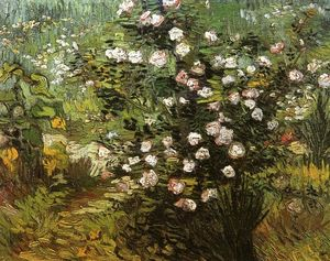 Vincent Van Gogh - Rosebush i Blossom - (Famous paintings reproduction)