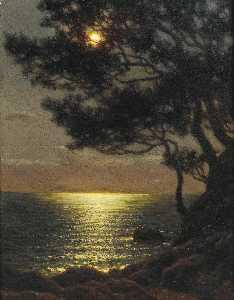 Moonlit coast