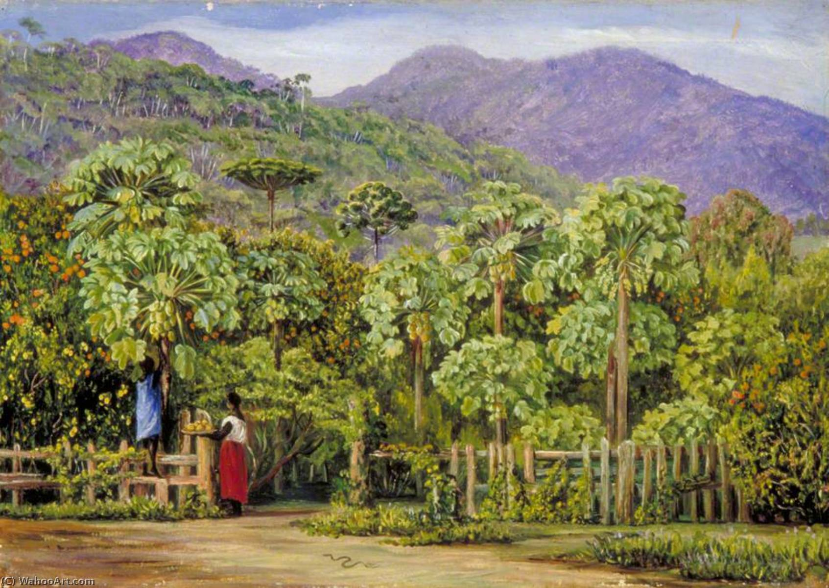 Pawpaw Trees at Gongo, Brazil, 1873 by Marianne North (1830