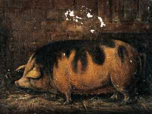 Stephen Jenner - A Sow in the Straw